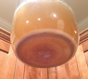 Yeast growth after first step-up.